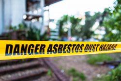 Asbestos Disease